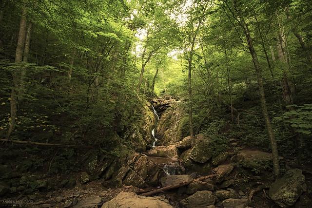 Dark Hollow - Shenandoah National Park (Virginia)