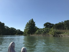 Comal River, Texas