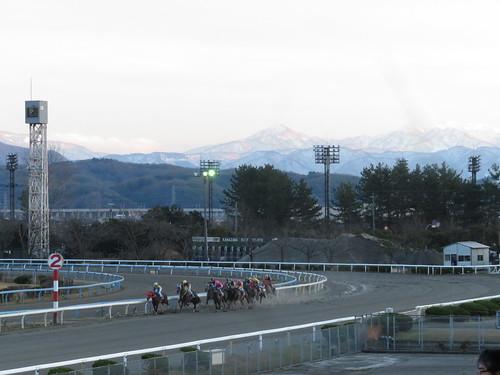 金沢競馬場のレース風景