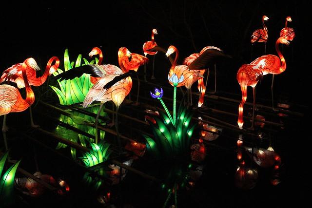 Giant Lanterns of China