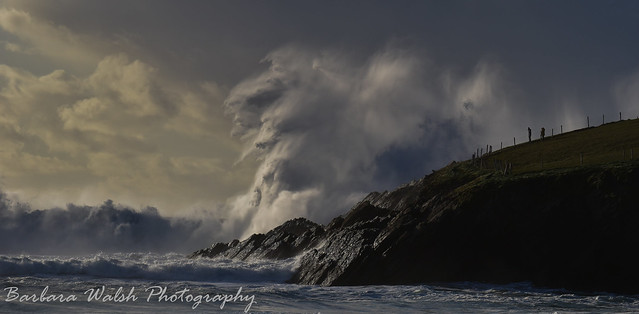 Clogher madness