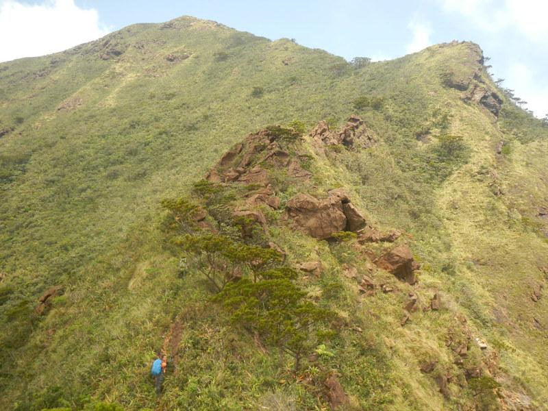 Mayo's Peak
