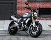 Ducati 1100 Scrambler Special 2019 - 2