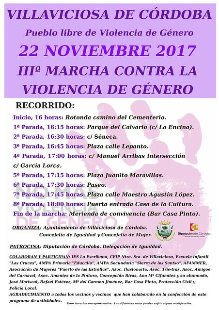 Violencia de género 2017
