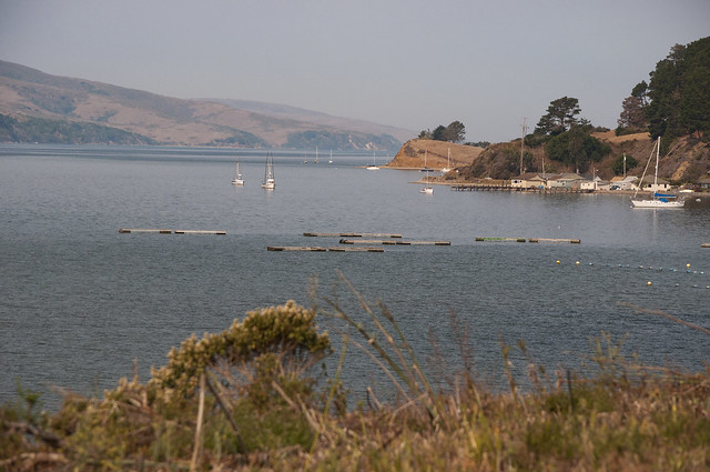 Highway 1 to Tomales Bay