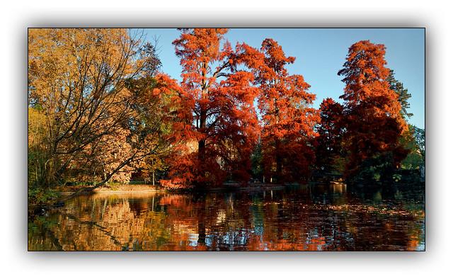 Ballade  automnale (Autumn walk) 4