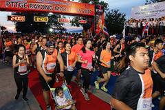 RYmarathon2017_Higlight-91