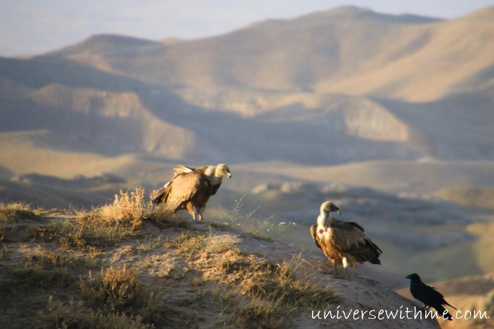 Uzbekistan Travel_076