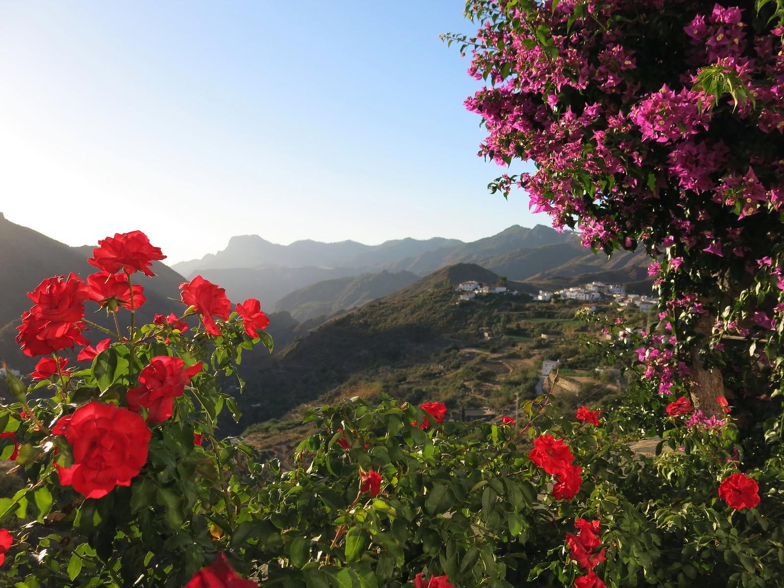 Gran Canaria 049