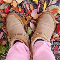 Crisp air , pretty leaves 🍂, sweaters & boots 👢, pumpkins 🎃 and coffee. I love fall 🙌!⠀ •⠀ •⠀ •⠀ •⠀ •⠀ #santorini #greece #greekislands #jewelry #jewellery #necklace #accessories #bracelet #jewelrygram #handmad