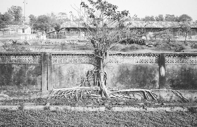 Myanmar #097
