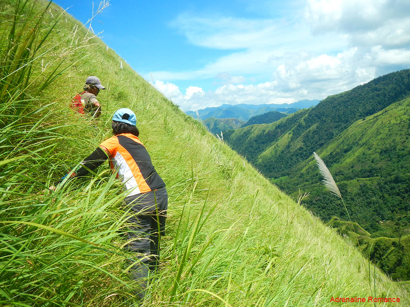 Climbing the last cogon-covered slope of Mt. Igcuron