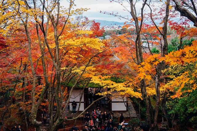 Kyoto_Jyojyakko-ji_08