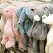 <p><a href=&quot;http://www.flickr.com/people/notdressedaslamb/&quot;>Not Dressed As Lamb</a> posted a photo:</p>&#xA;&#xA;<p><a href=&quot;http://www.flickr.com/photos/notdressedaslamb/38142585544/&quot; title=&quot;P&amp;amp;O Ferries duty free \ Christmas shopping | Not Dressed As Lamb, over 40 fashion &amp;amp; lifestyle&quot;><img src=&quot;http://farm5.staticflickr.com/4555/38142585544_6af9cde50d_m.jpg&quot; width=&quot;240&quot; height=&quot;180&quot; alt=&quot;P&amp;amp;O Ferries duty free \ Christmas shopping | Not Dressed As Lamb, over 40 fashion &amp;amp; lifestyle&quot; /></a></p>&#xA;&#xA;