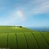 Under the Rainbow by Neil_Leighton