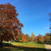 Glorious Christchurch Park in November