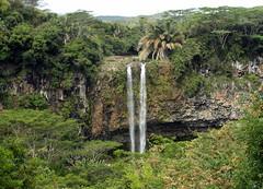 mauritius jungle waterfall