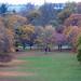 Wollaton Park in autumn