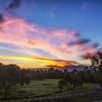 21. November 2017 - 18:58 - Park Sunset