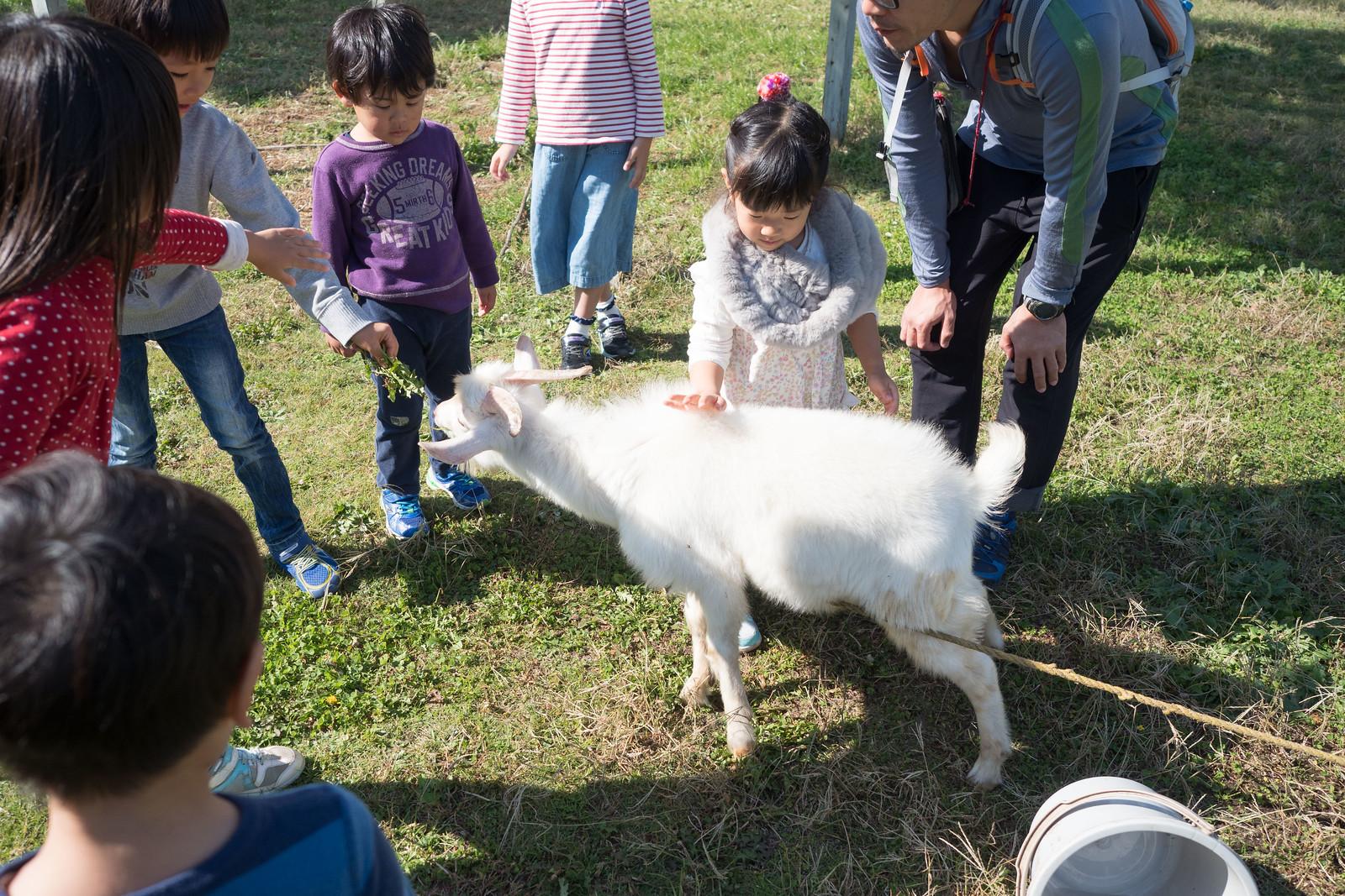 Mother_Farm_chiba-68