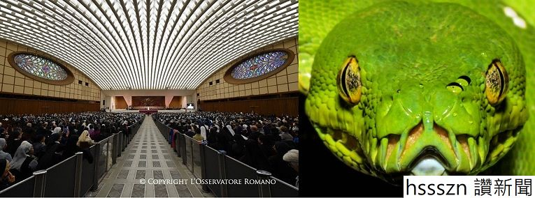 snake_765_284