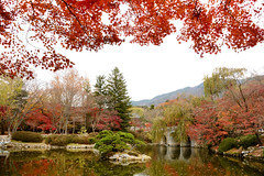 S.Korea 韓國 2017