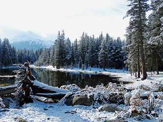 Under a Blanket of Snow, Yosemite High Country 2015