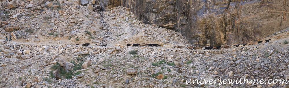 Tajikistan_Afghanistan_Travel019