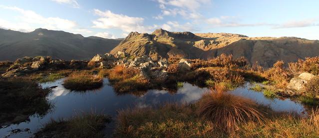 Rich colours on Lingmoor Fell.