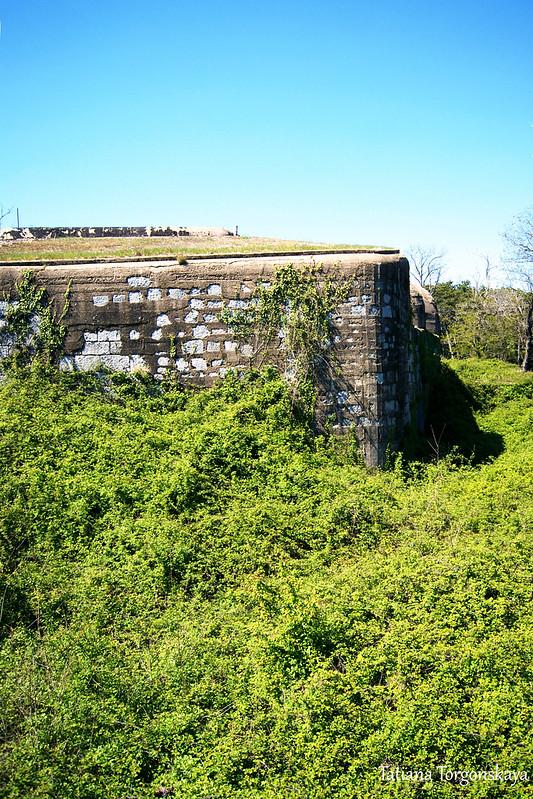 Стены крепости и заросли перед ней