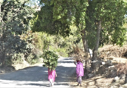 i-udaipur-kumbhalgarh-Route (14)