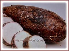 Tubers of Manihot esculenta (Tapioca, Cassava, Brazilian Arrowroot, Yuca, Ubi Kayu in Malay) with chalk-white or yellowish flesh, 20 Nov 2017