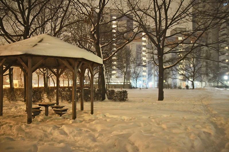snow pavillion