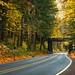 Fall adventure tunel by Matt Straite Photography