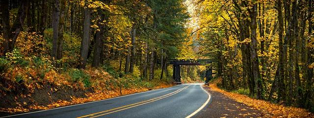 Fall adventure tunel