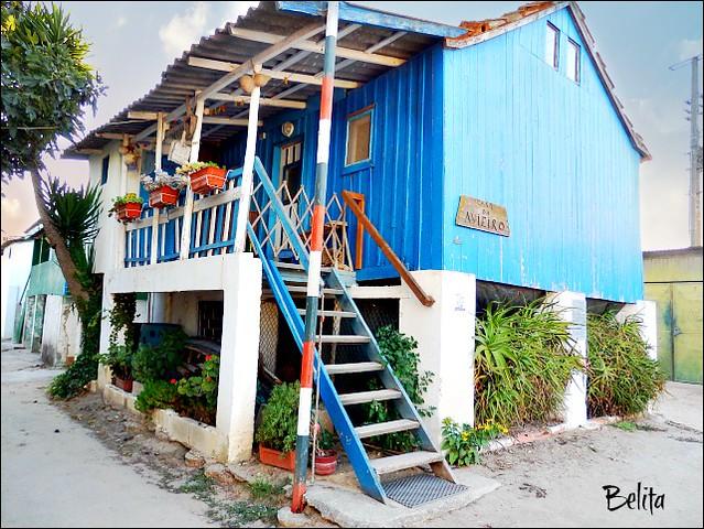 house---