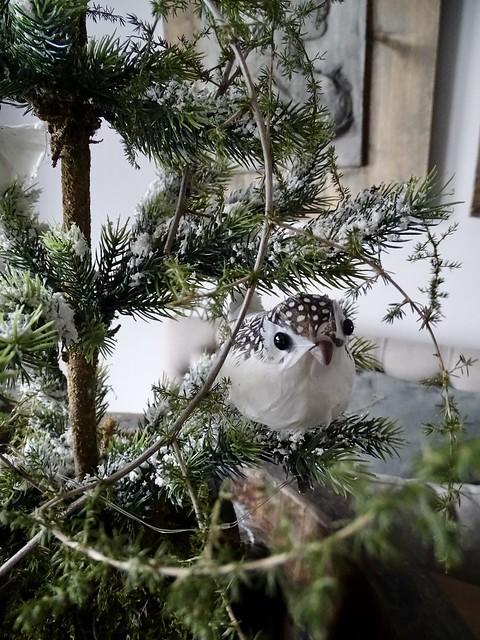 Vogeltje in de kerstboom