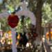 171101_Michoacan 08 por Rob_Serrano
