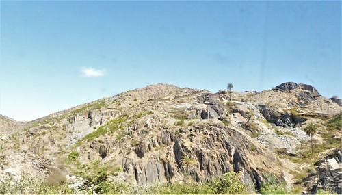 i-Mount Abu-udaipur (41)