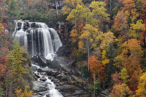 waterfall whitewaterfalls leaves