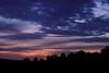 Goathill dusk silhouette
