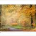 Savernake Autumn by tobchasinglight