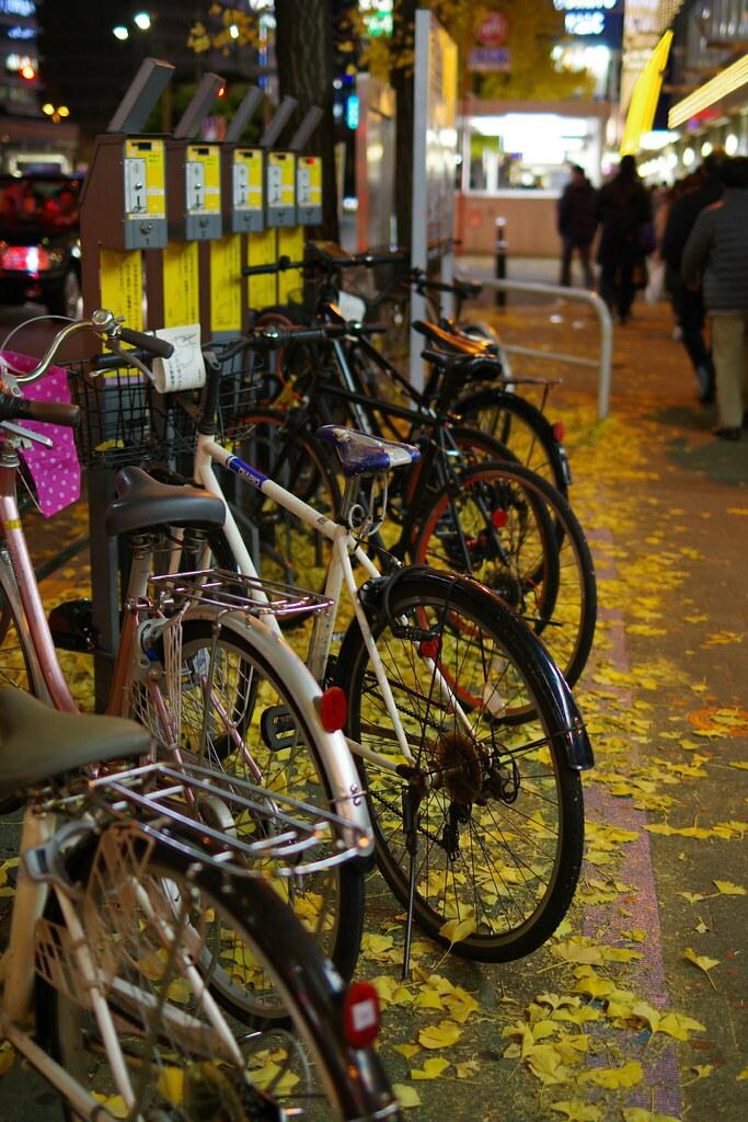 落ち葉と自転車 Bicycles and falles leaves