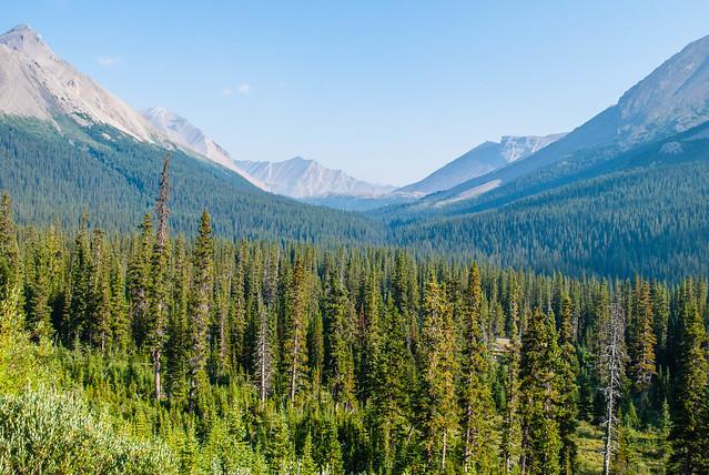 2017 08 - Canada - Banff and Jasper-79.jpg