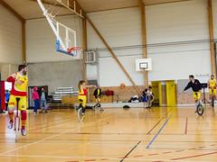 Rennes monobasket