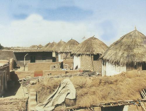 न्यू कोटड़ा स्थित घरों का आकार सिलेंडर की तरह है। इससे बाढ़ की स्थिति में पानी कोनों में जमा नहीं होता बल्कि चारों तरफ बंट जाता है जिससे घर मजबूती के साथ खड़ा रहता है