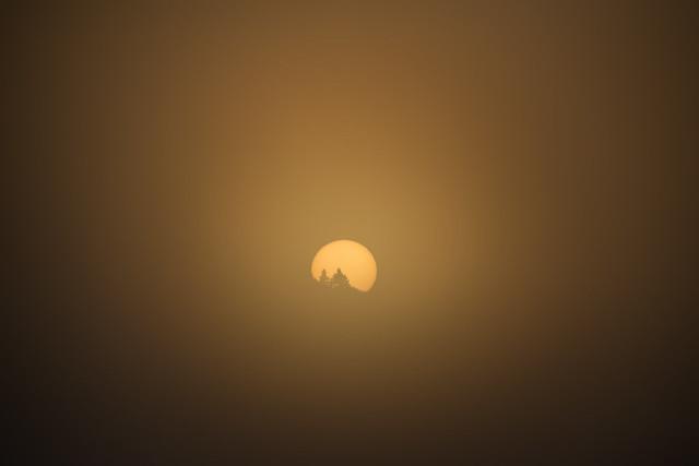 Good morning, foggy sunshine...