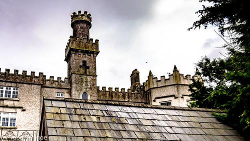 Cabra Castle Ireland-6