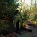 St Keyne Well