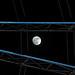 Atrapando a la luna por S. Alexis